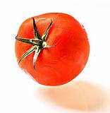 """A """"munição"""" da Tomatina"""